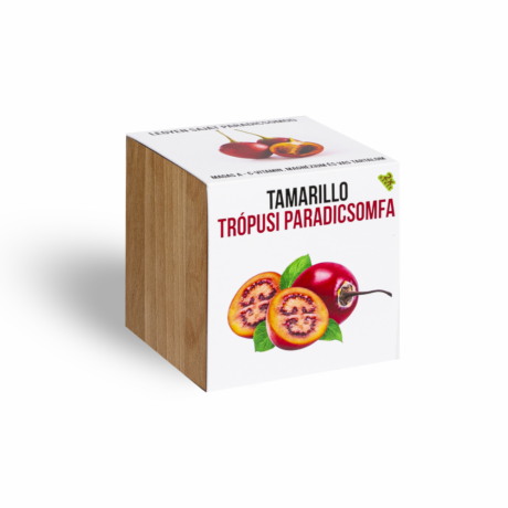 Tamarillo - Trópusi paradicsomfa - növényem fa kockában